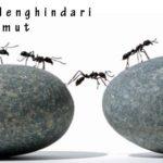 Petua Menghindari Semut
