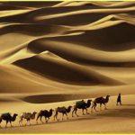 Kisah Hijrah – Awal Muharram