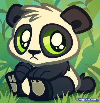 how-to-draw-a-baby-panda,-baby-panda-bear-cub